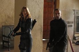 marvel-agents-of-shield-season-2-episode-10-dvdbash-13